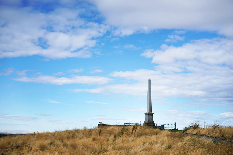 Pacifico Clara Worm Ranch 8.jpg