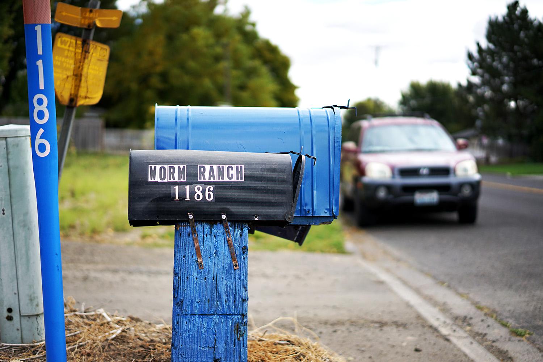 Pacifico Clara Worm Ranch 1.jpg