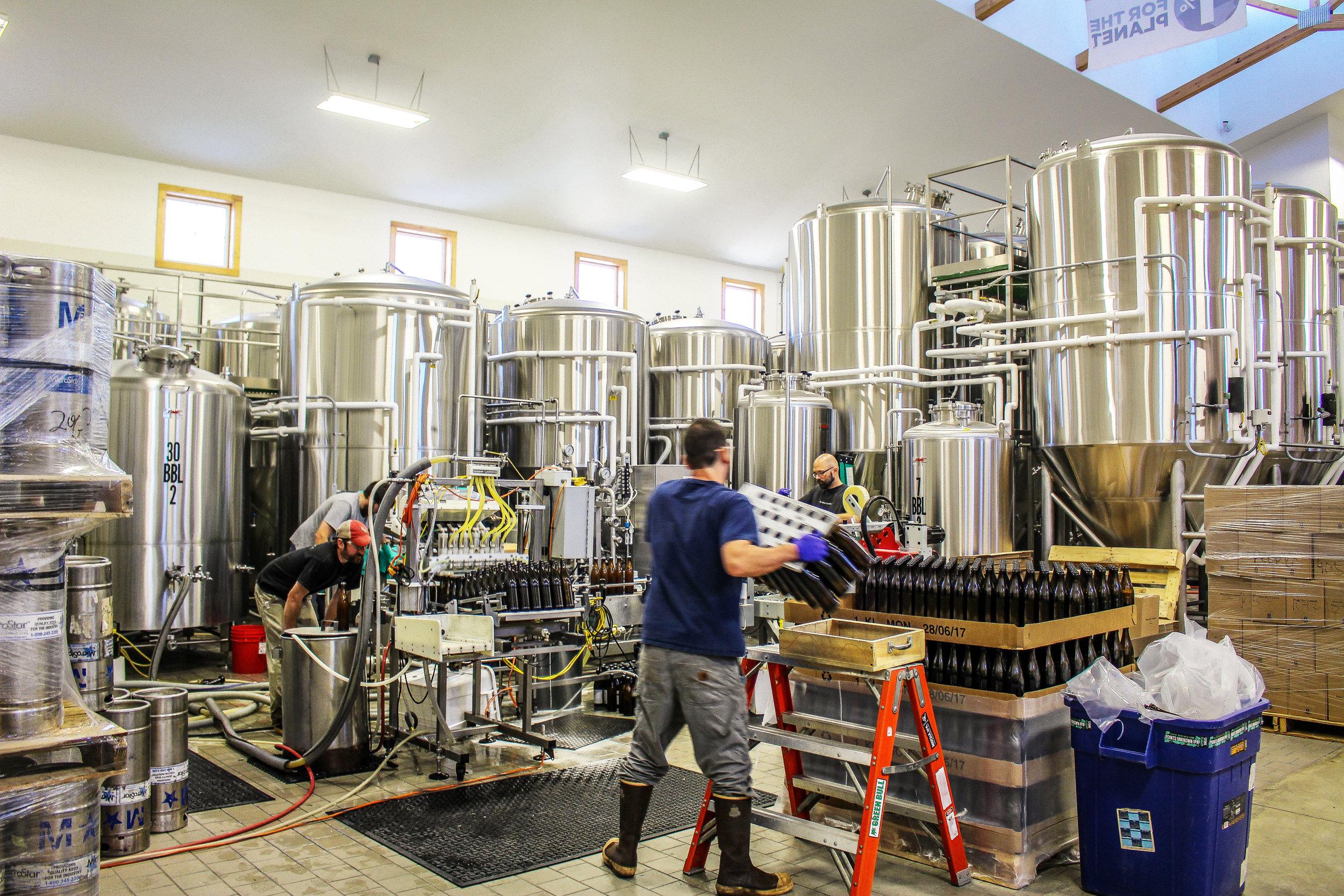 Maine Beer-50.jpg
