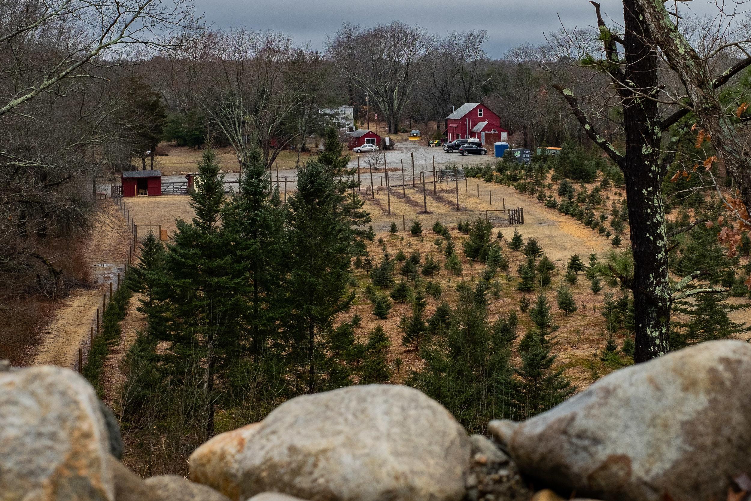 Farm View.jpg