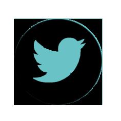 logo TWITTER TRIKOARTE.png