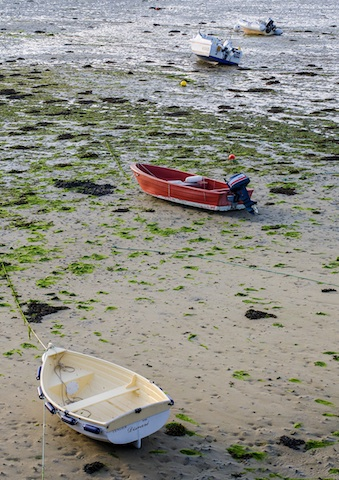 Boats on the bottom of the sea at low tide.