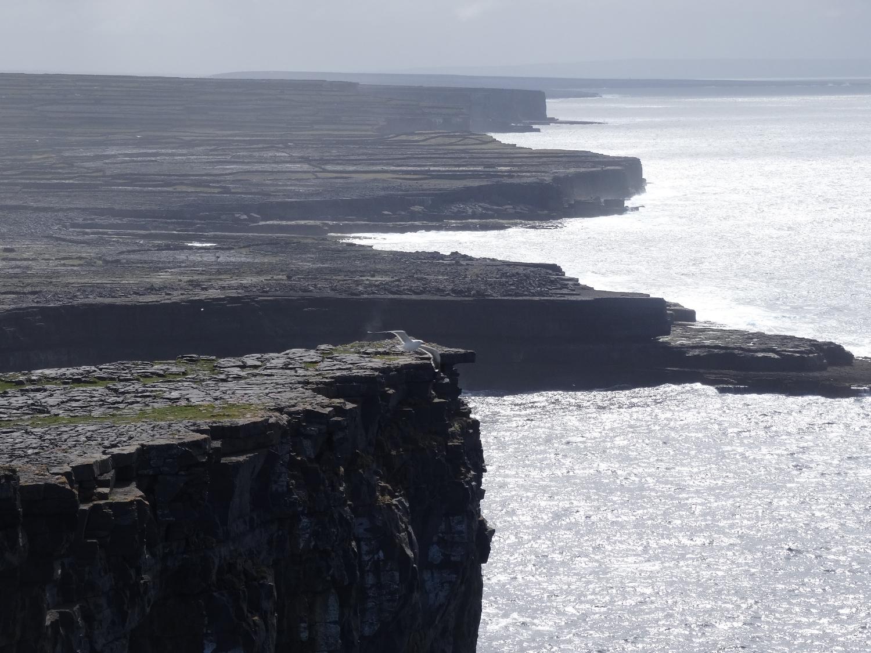 Dún Aonghasa, ( Dun Aengus) Galway, Ireland 2015