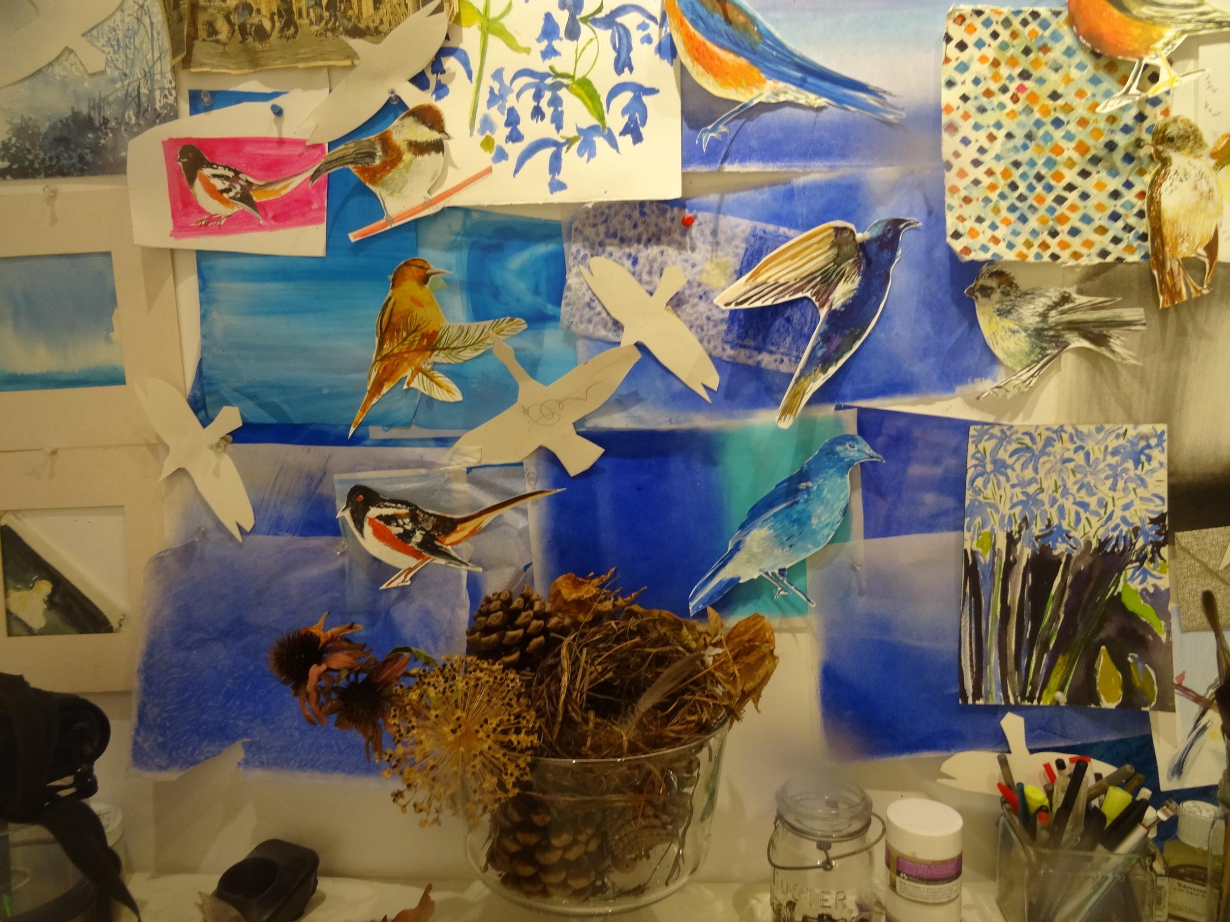 Bird studies, studio, watercolour and pastel, Sept.2015