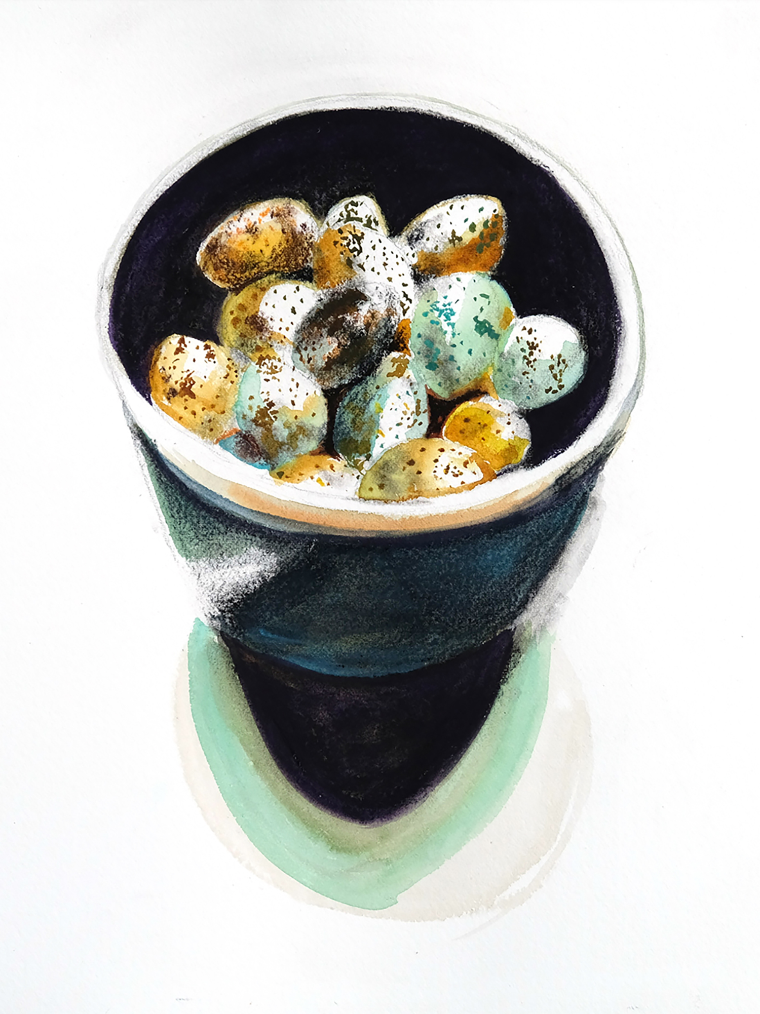Quail eggs in dark bowl, charcoal and watercolour on watercolour paper,