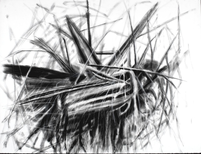 Ambleside Driftwood