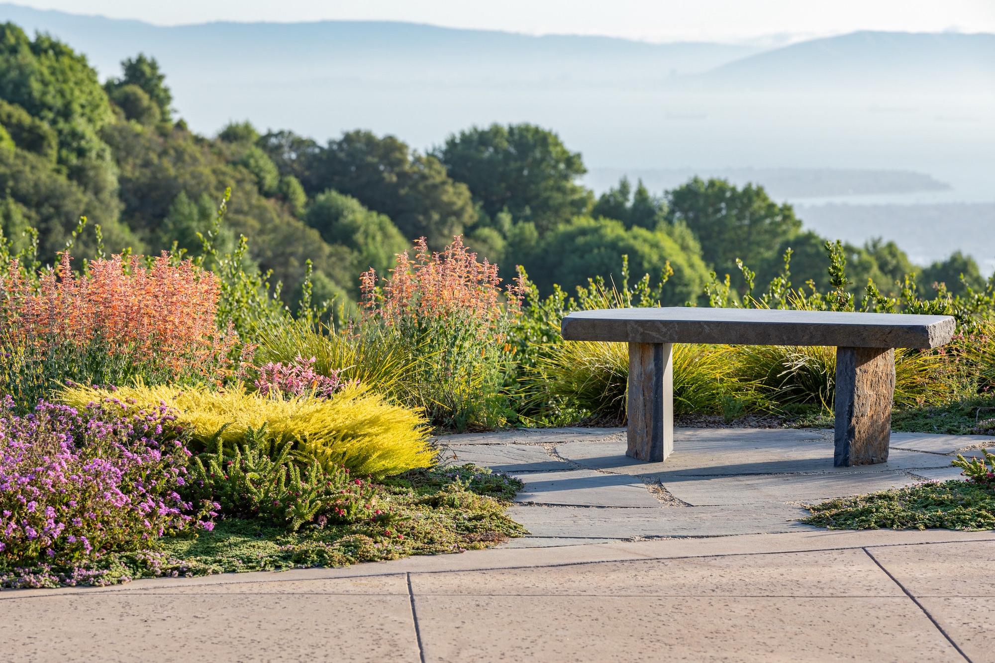 Award winning garden in Oakland,CA