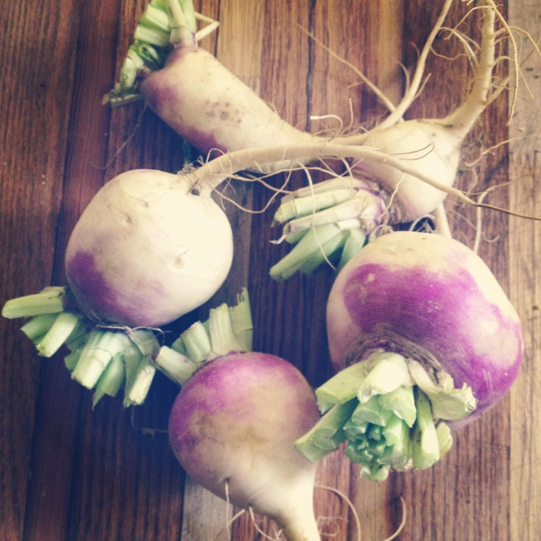 Organic produce drop on the doorstep from a neighbor friend.