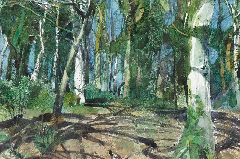 Carwinion Woods
