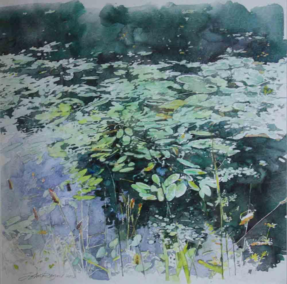 Water-Lilies-at-Ennis-.jpg