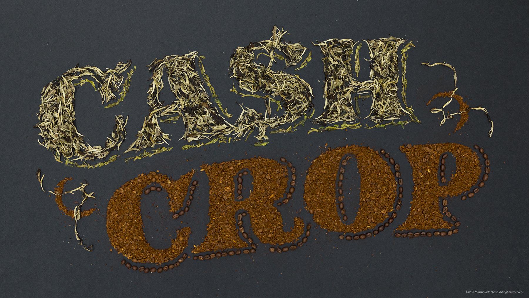 Food Typography + Condé Nast