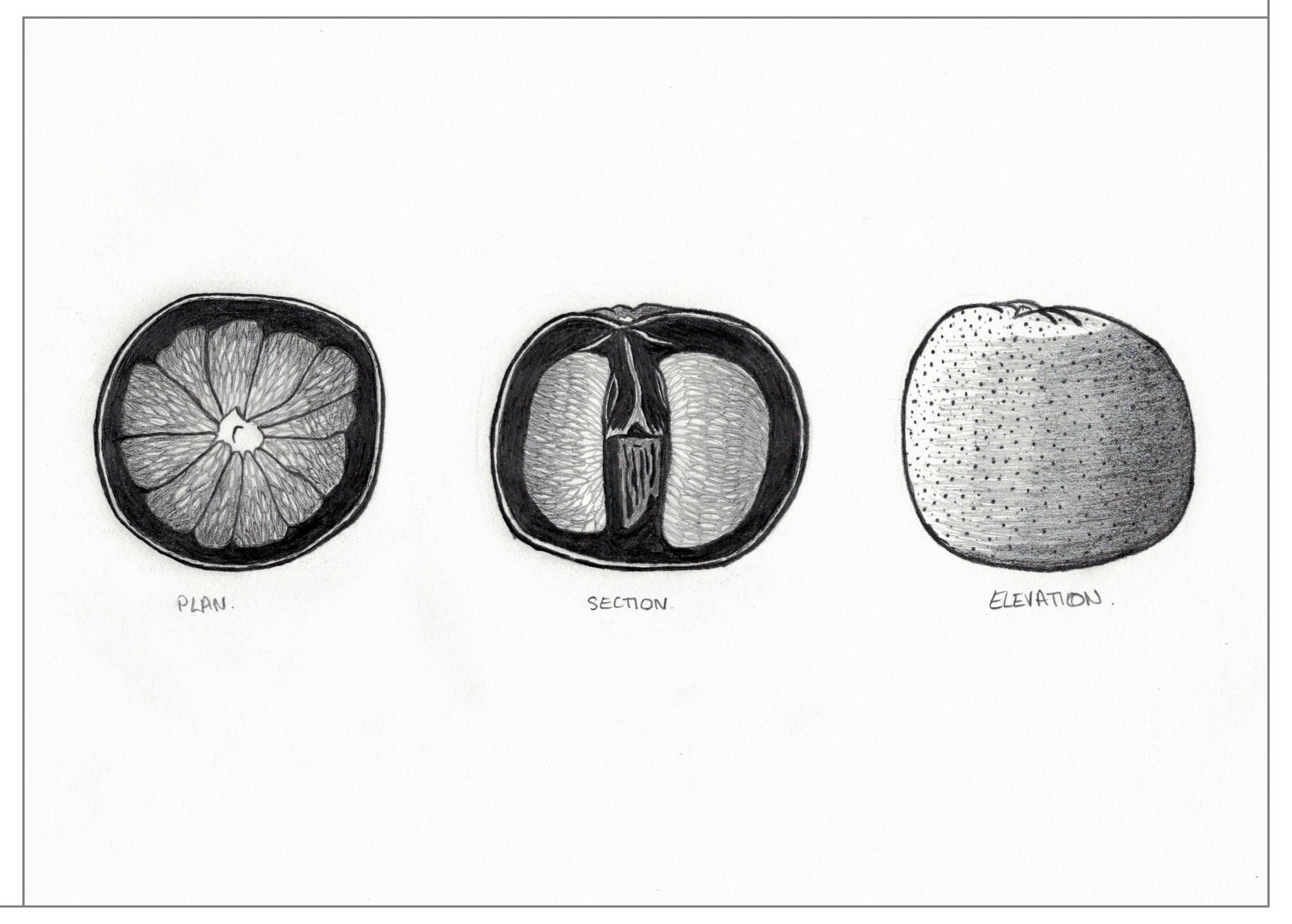 0-grapefruit-poche.jpg