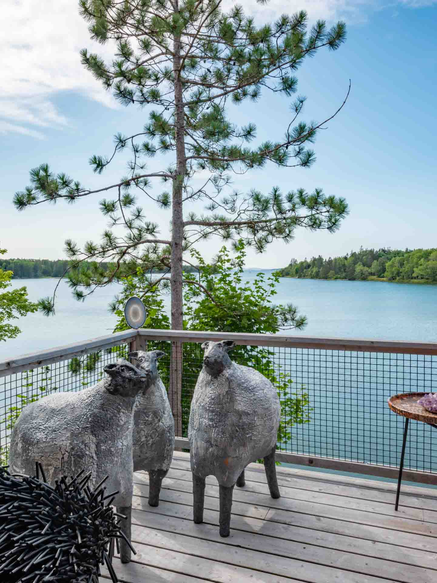 Mark Chatterley Sheep on the deck