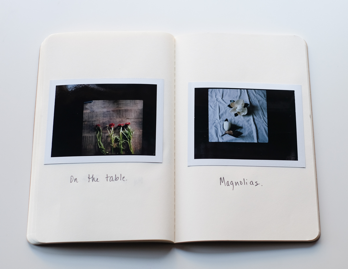 AzzariJarrett_FilmAlbum-15.jpg