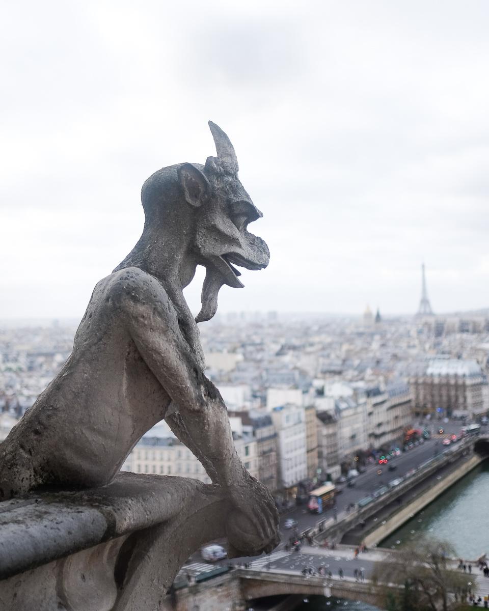 Azzari Jarrett | Notre Dame Paris