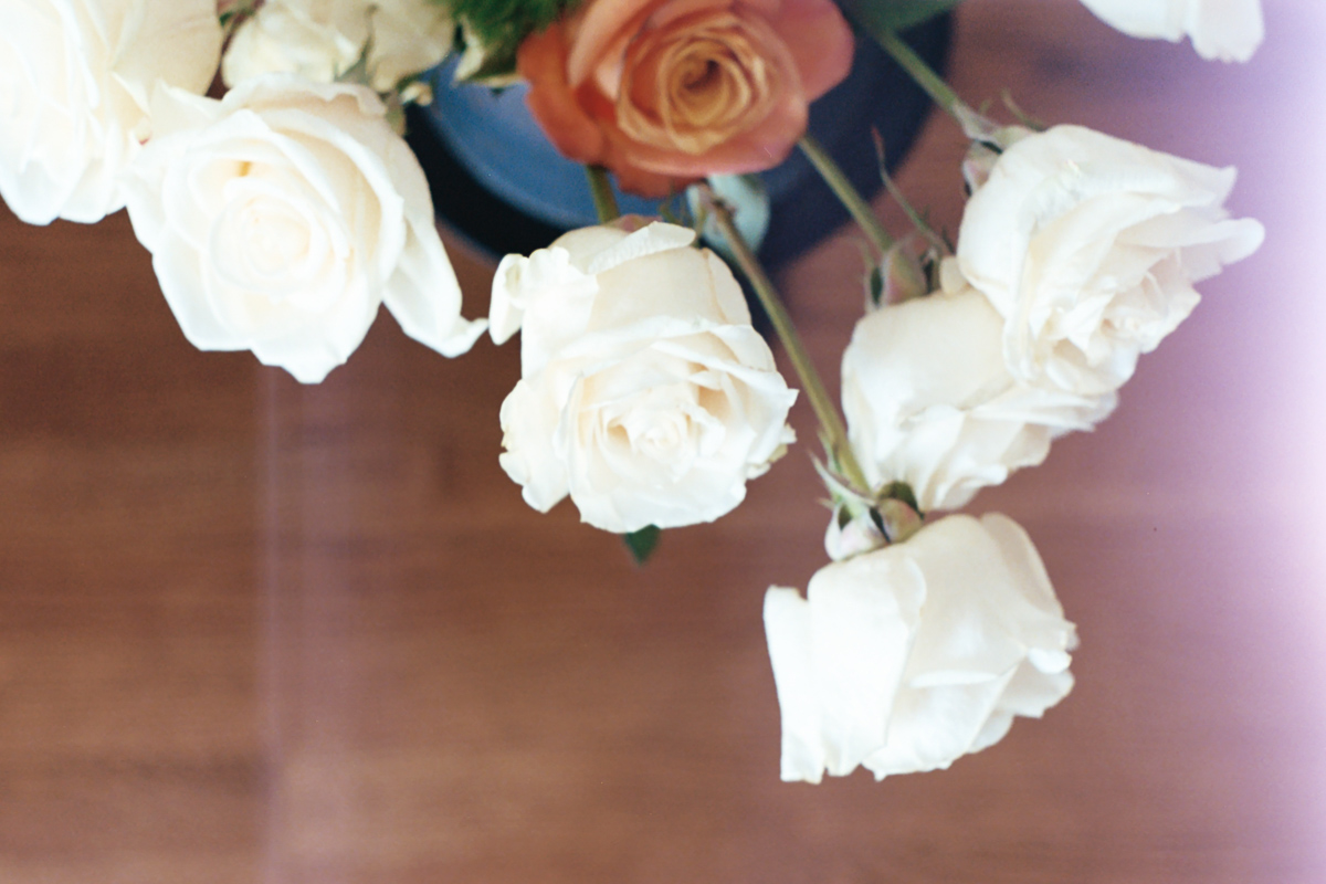 White Roses on 35mm film by Azzari Jarrett