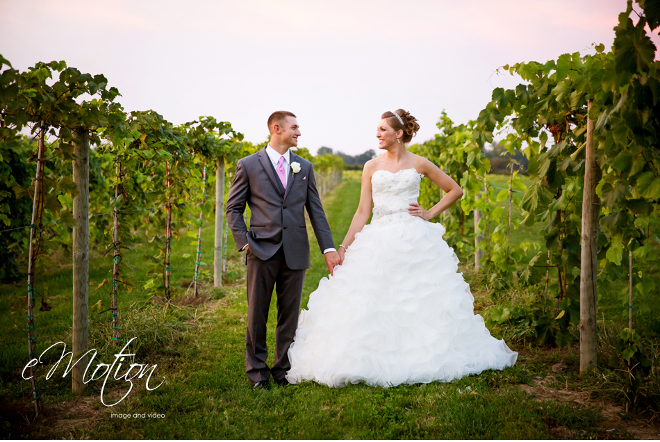 Huber's Winery Wedding eMotion image