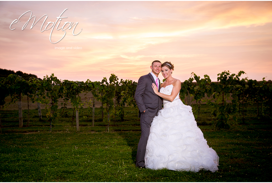Huber's Winery Wedding Photos eMotion image