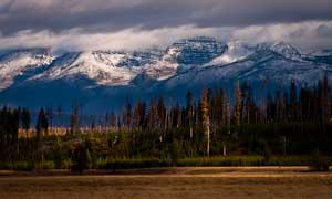 montana previews 300 36 (14 of 37).jpg