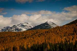 montana previews 300 36 (22 of 37).jpg