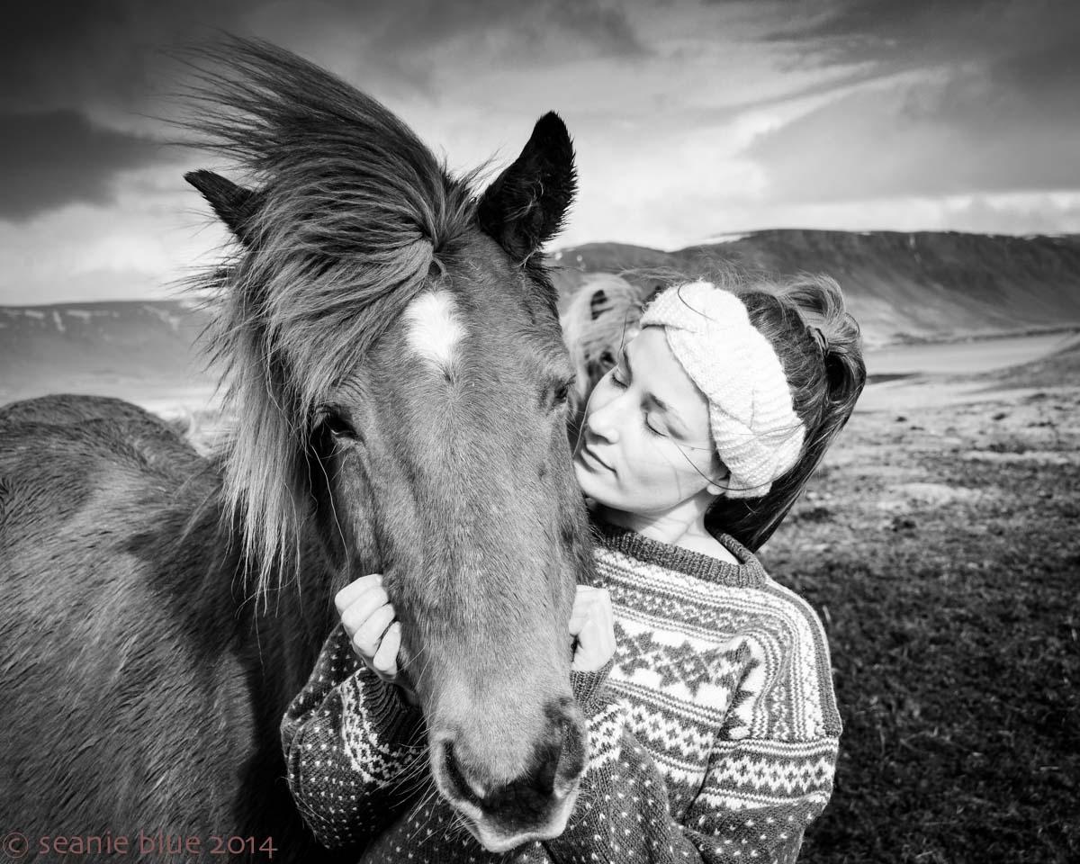 Halldora tames a nervous horse.