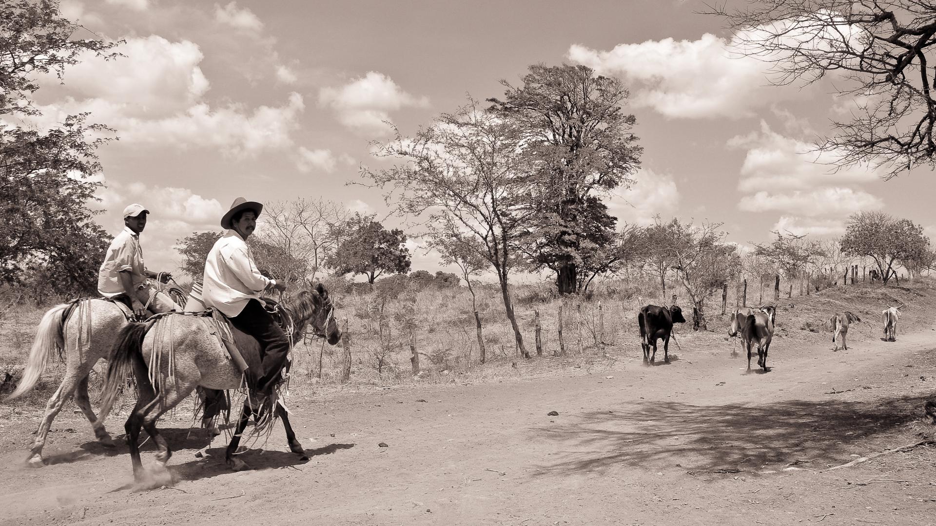 Cowboylandia at Noon.