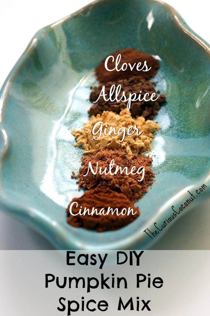 Best ever DIY pumpkin pie spice mix // TheCuriousCoconut.com