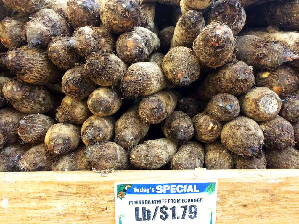 White malanga: the potato of the autoimmune protocol.