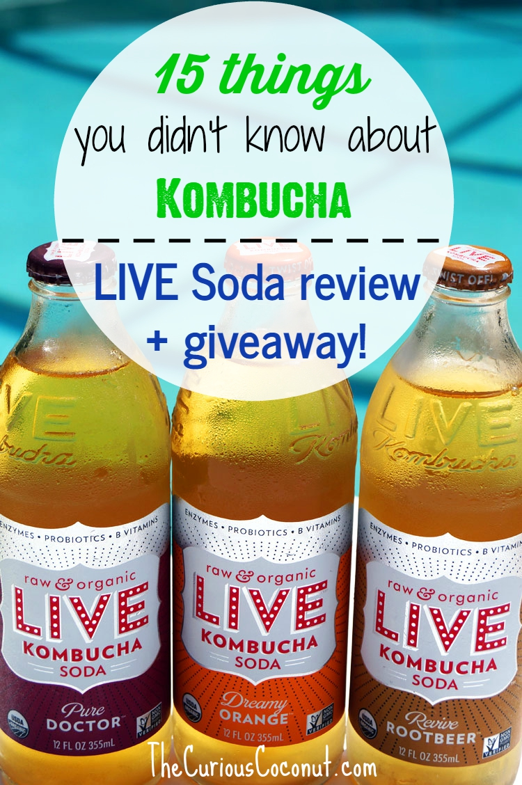 15 things you didn't know about #kombucha + LIVE Kombucha Soda review and giveaway! // TheCuriousCoconut.com #probiotics #livesoda
