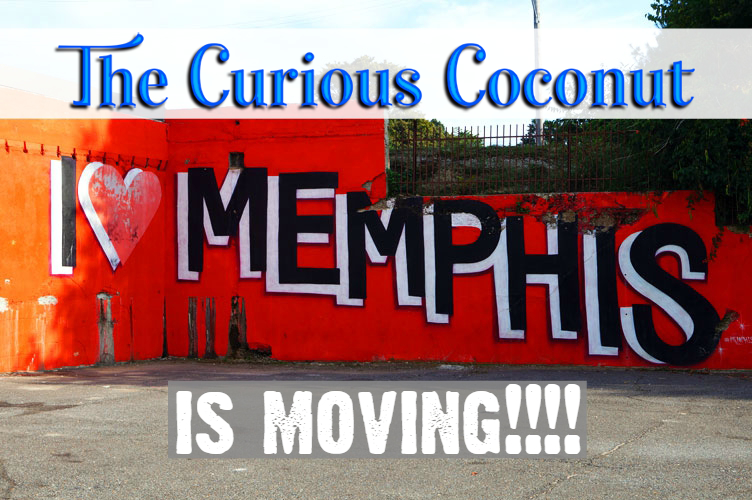 curious coconut moving memphis