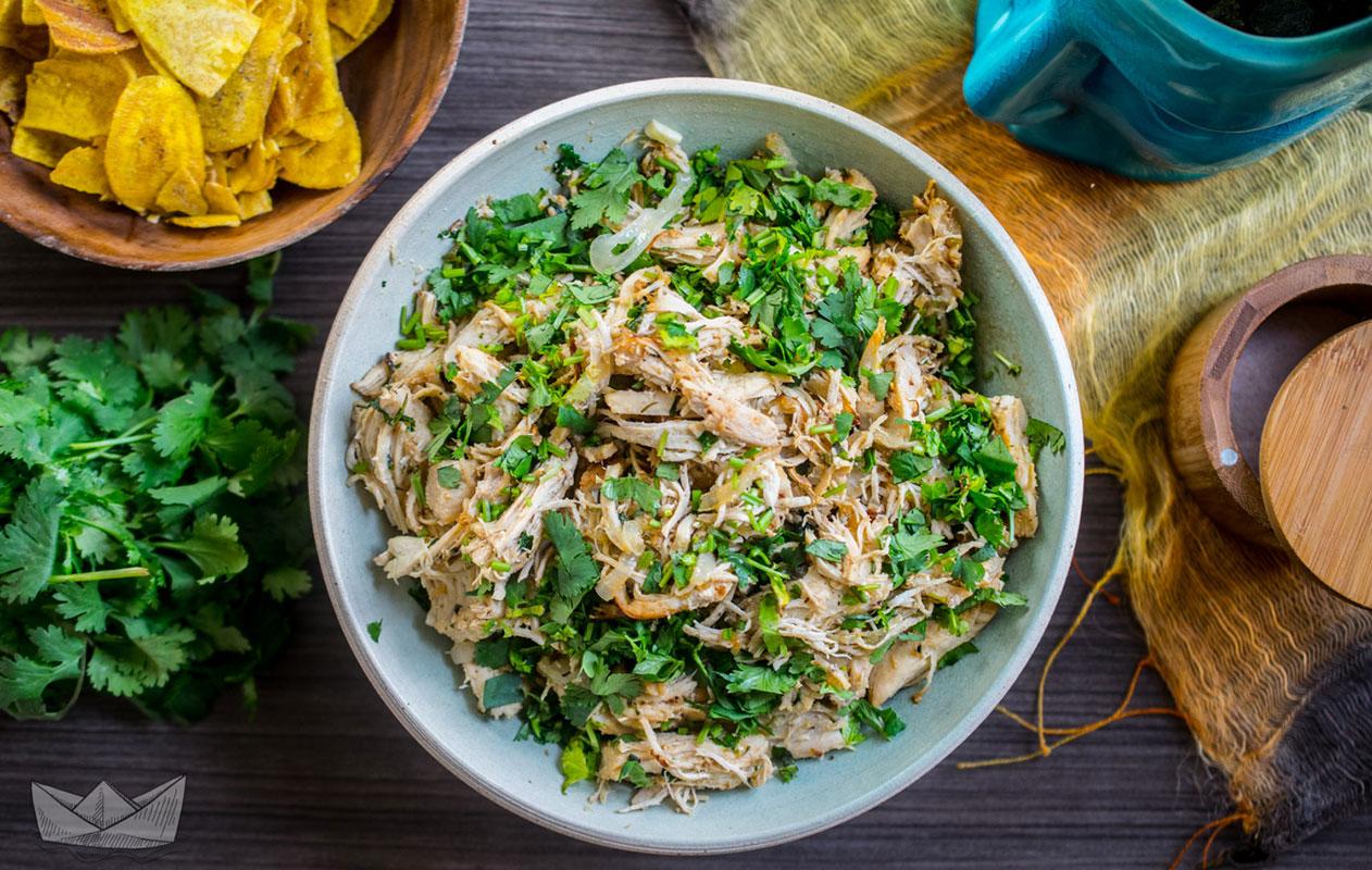intstant pot autoimmune diet recipes