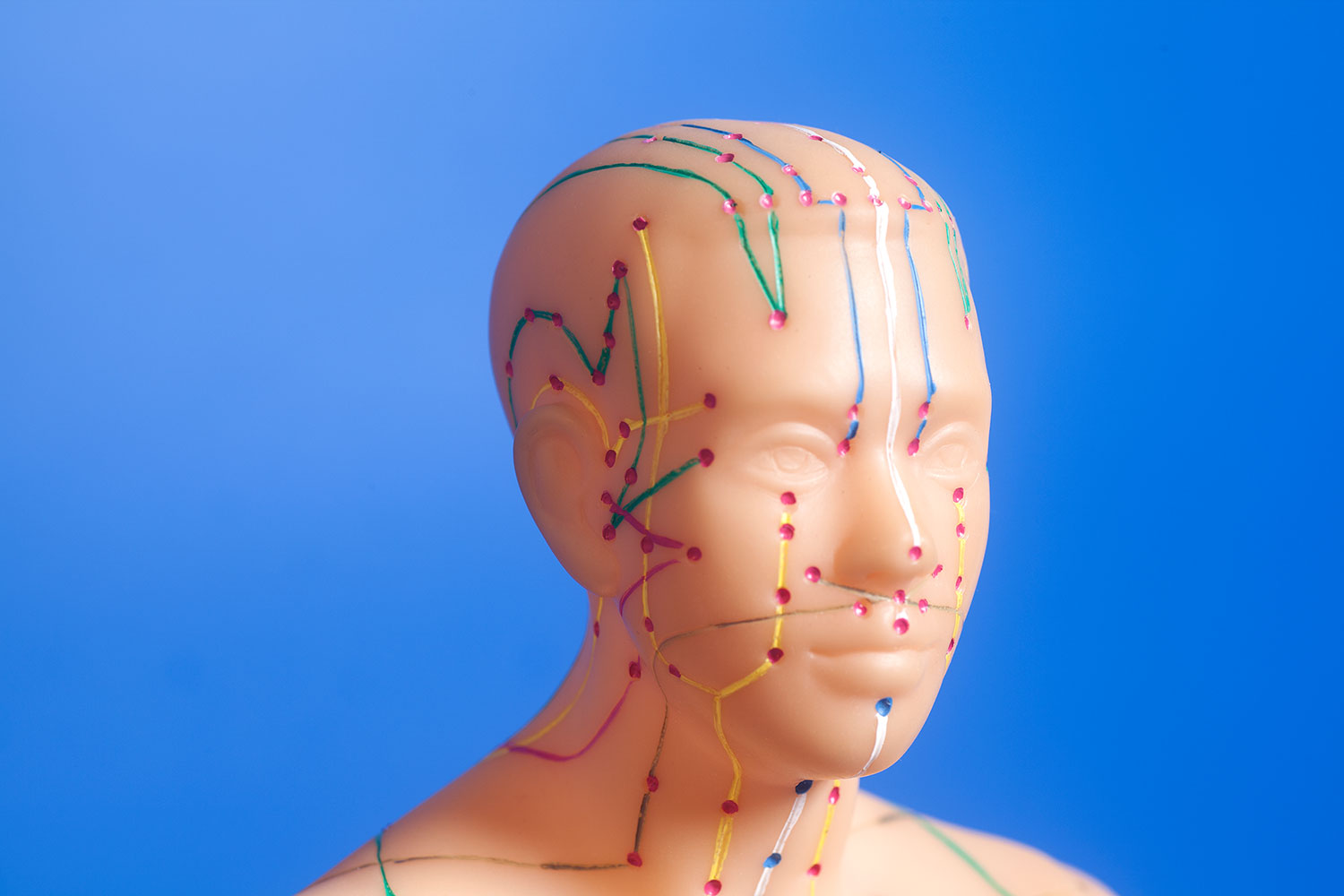 acupuncture-meridians-head-and-face.jpg