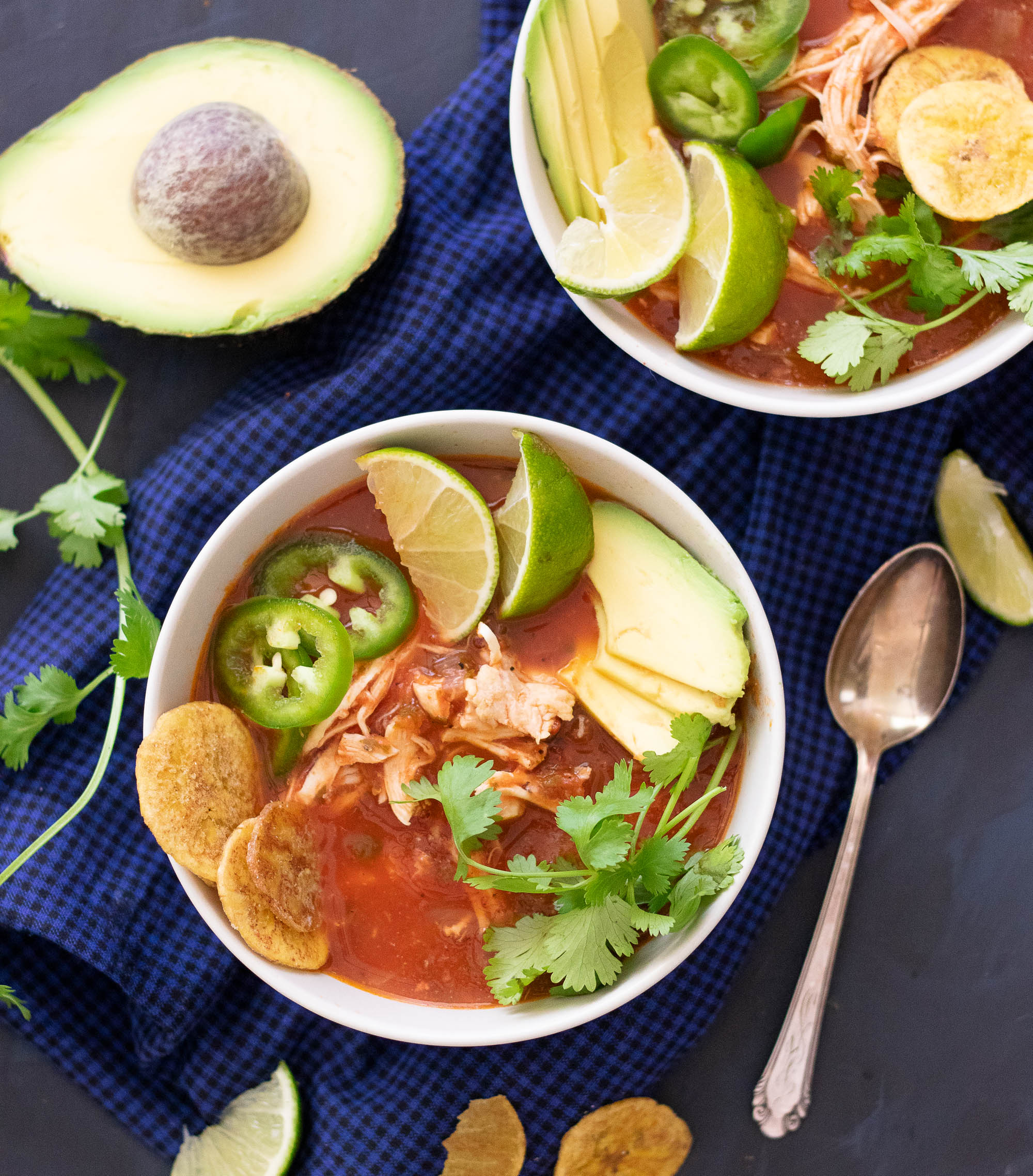 Fire Roasted Salsa Soup with Chicken-1.jpg
