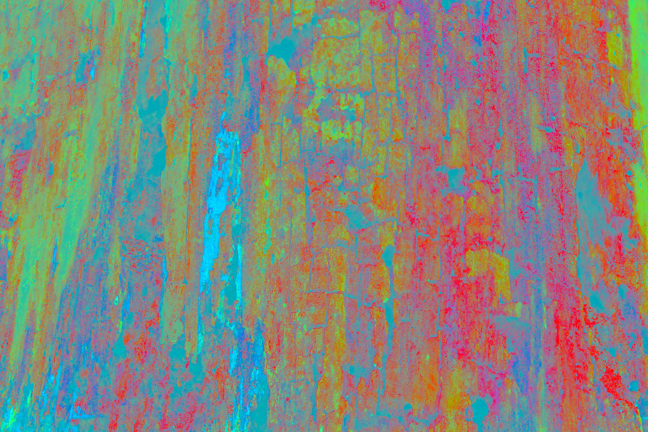 0I6A0480.jpg