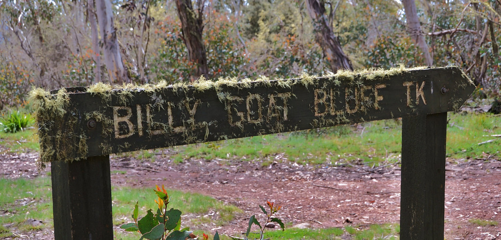 Sign at the entrance of Billy Goats Bluff Track.