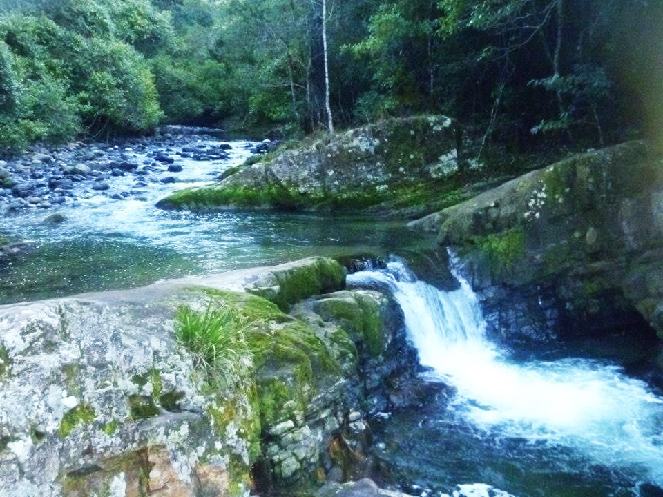 Ladies Well Barrington Tops National Park. Sent in by our mate Brett Gambrill.