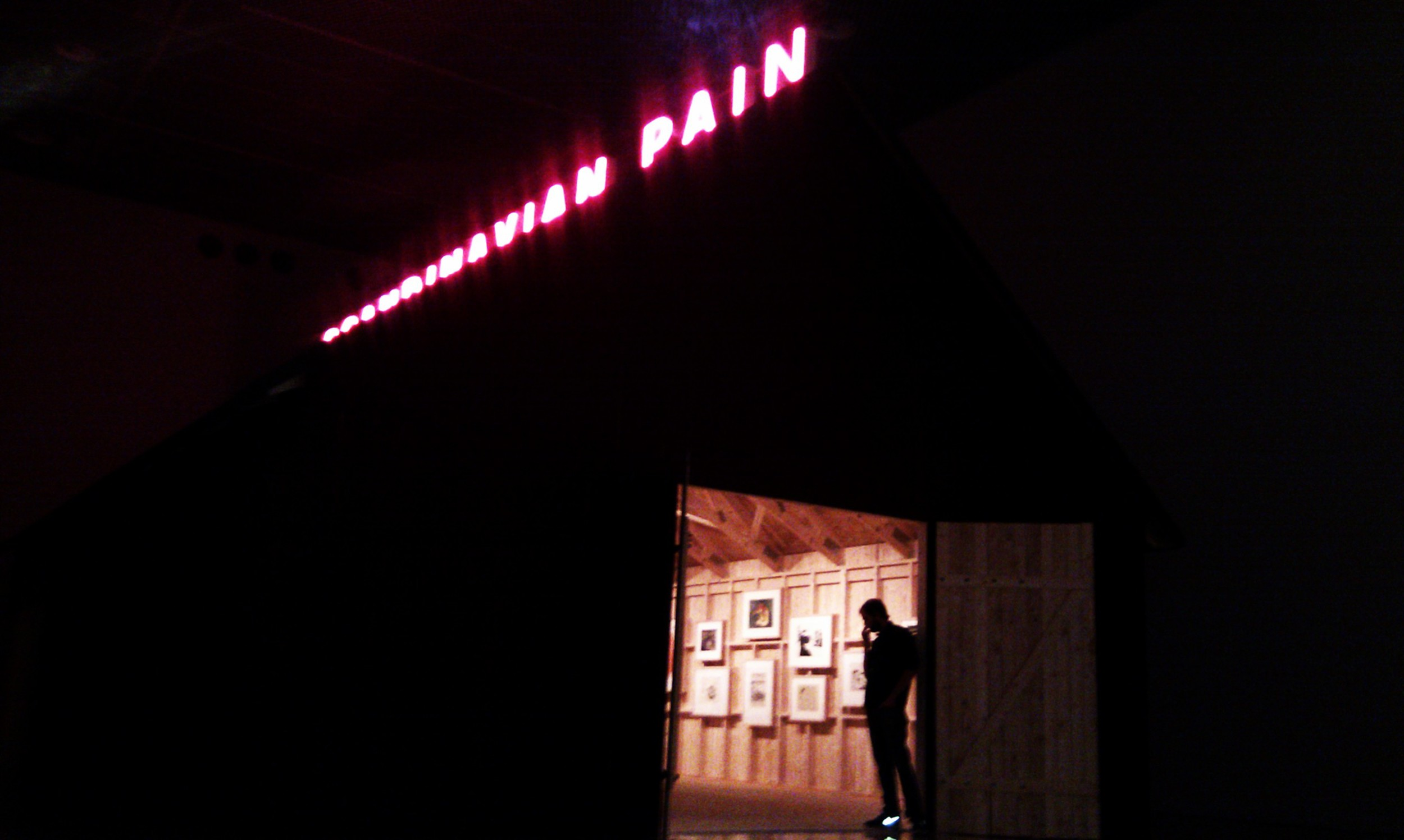 Scandinavian Pain @ Malmo Museum of Modern Art