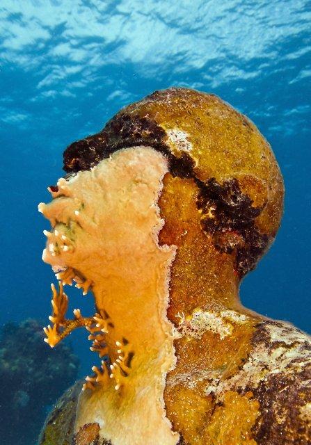 Man_on_Fire_MUSA_Cancun_Isla Mujeres_depth_8m