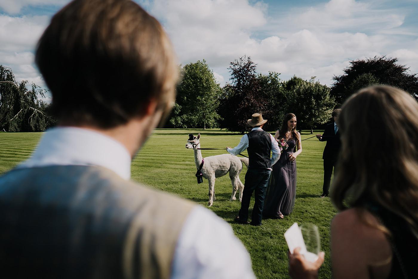 Belinter_House_Wedding079.jpg