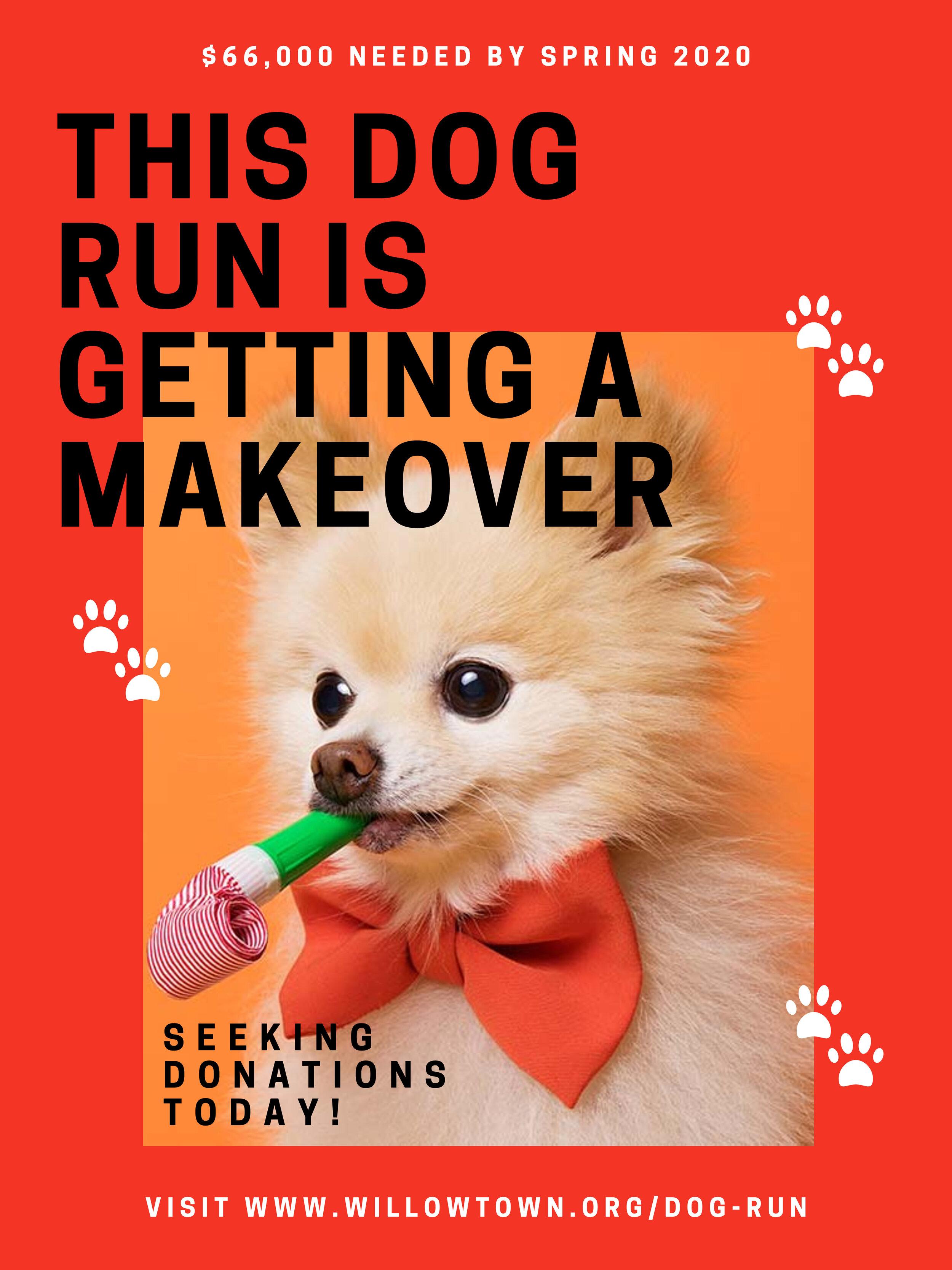 Dog Run Fundraise.jpg