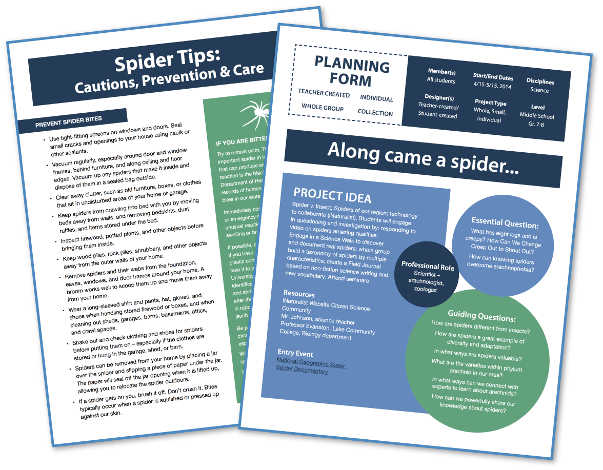 Spider Project Planning Form
