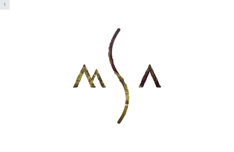 MSA-V2-02.jpg