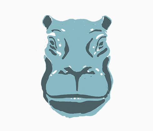 Burundi Hippo.jpg