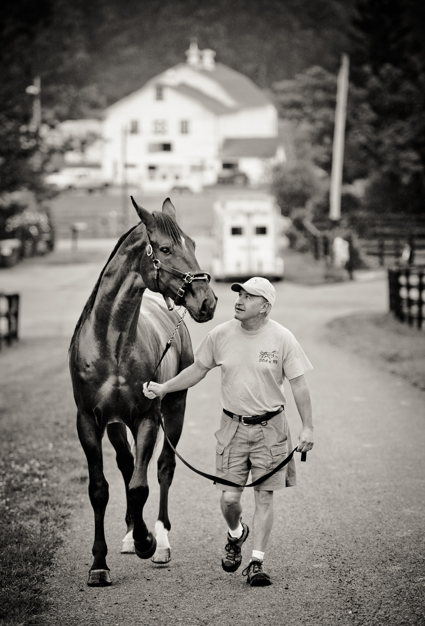 horseblog064.JPG