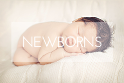massachusetts_newborn_photos.png