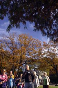 20091025__gt1026gttrees~01_200.jpg
