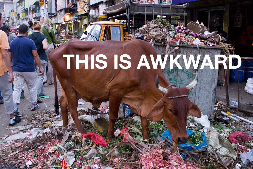 Taken by Amol Waishampayan in the Central Vegetable Bazar, hennai, India