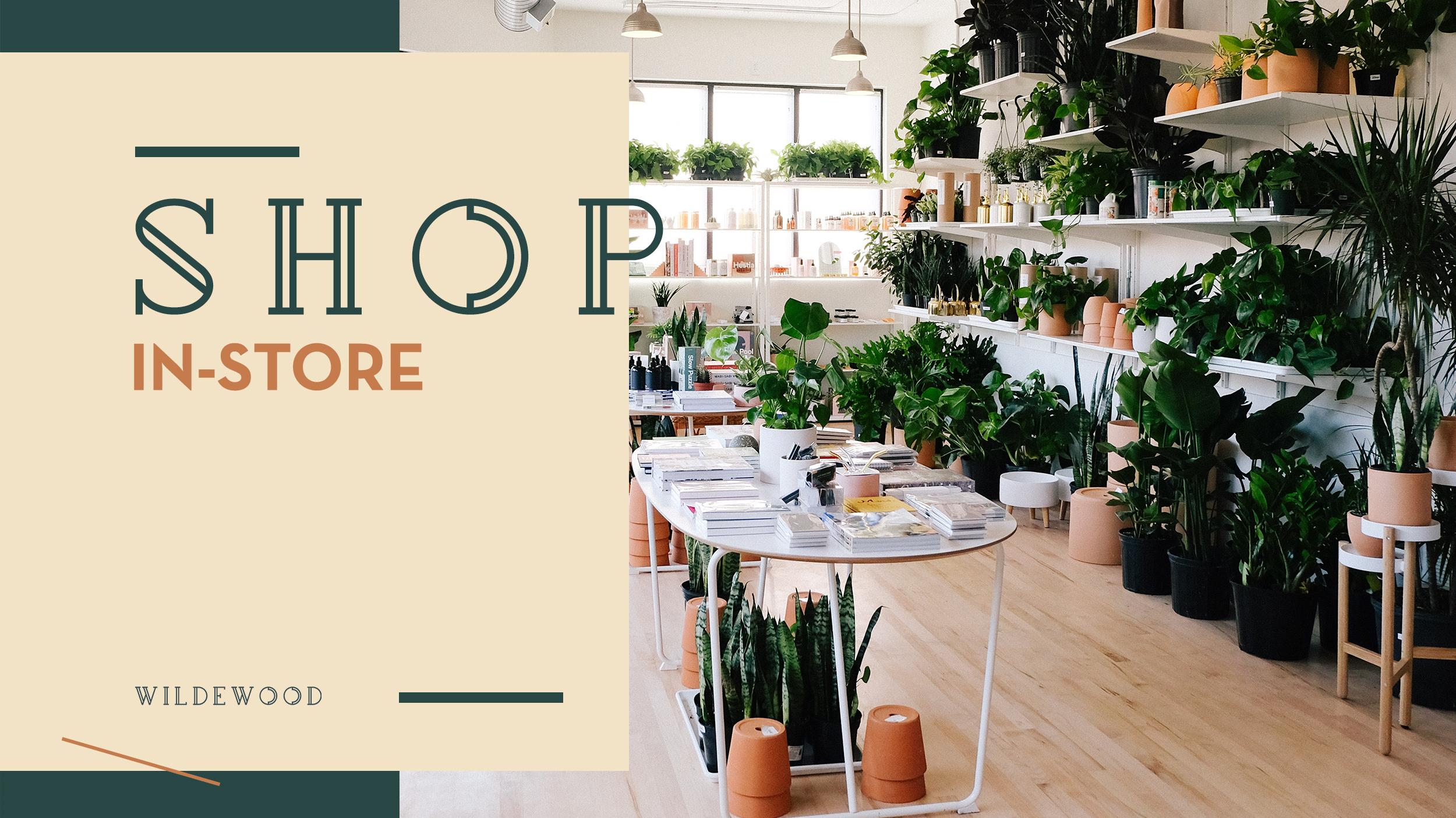 Website-ShopInstore2.jpg