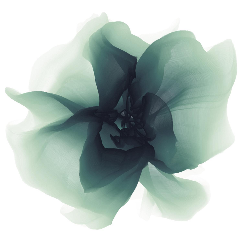 bloem square.jpg