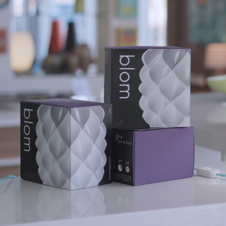 sq blom boxes square.jpg